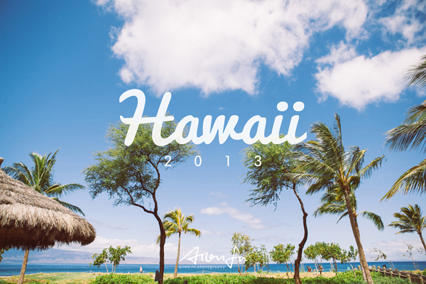 hawaii-profile