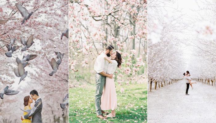 滿足妳的粉紅少女心! 15張浪漫綻放的海外櫻花婚紗照!